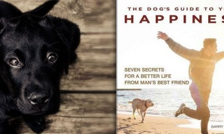 New Book Offers Roadmap To Happiness