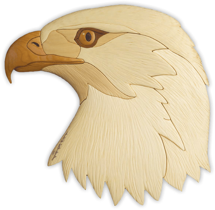 Intarsia Eagle Head Art Design