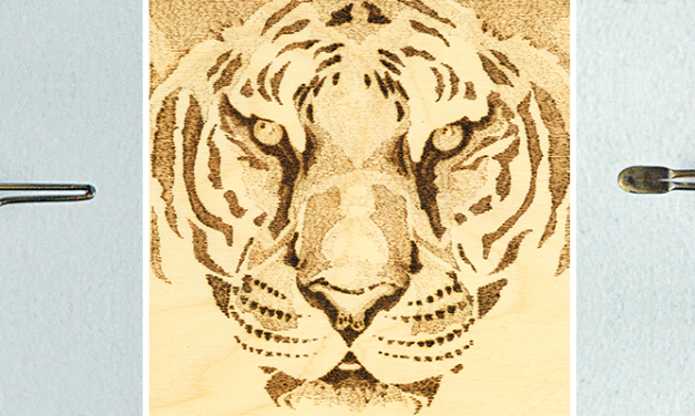 Learning Tones: Bengal Tiger Pyrography Practice Project