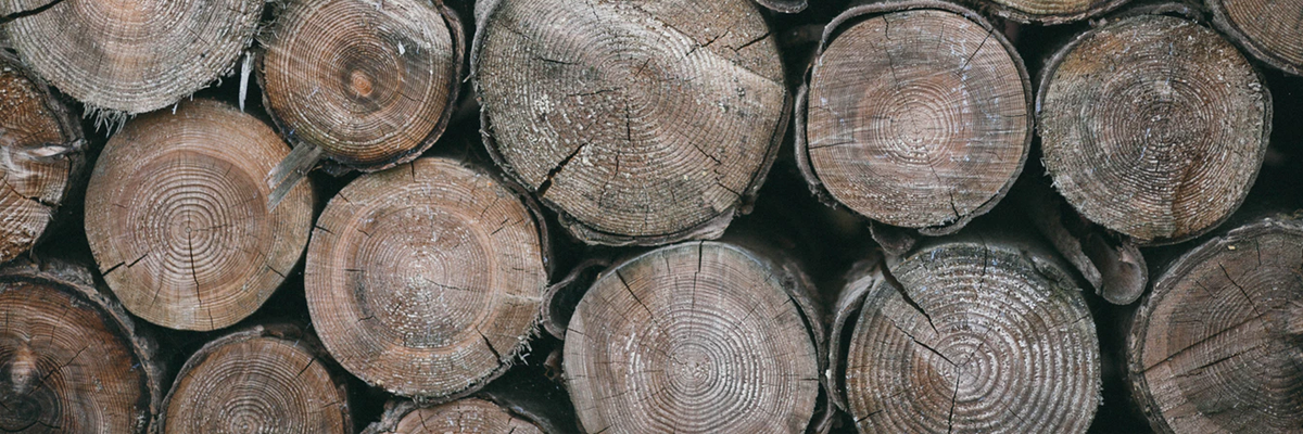 Choosing Woods for Outdoor Projects