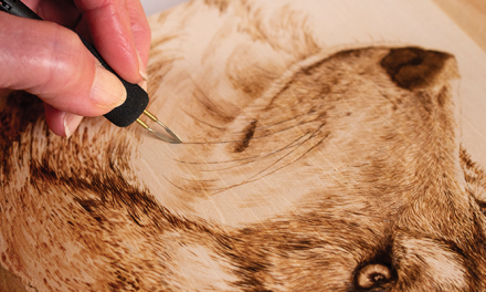 Which Wood Burning Pen is Right for you?